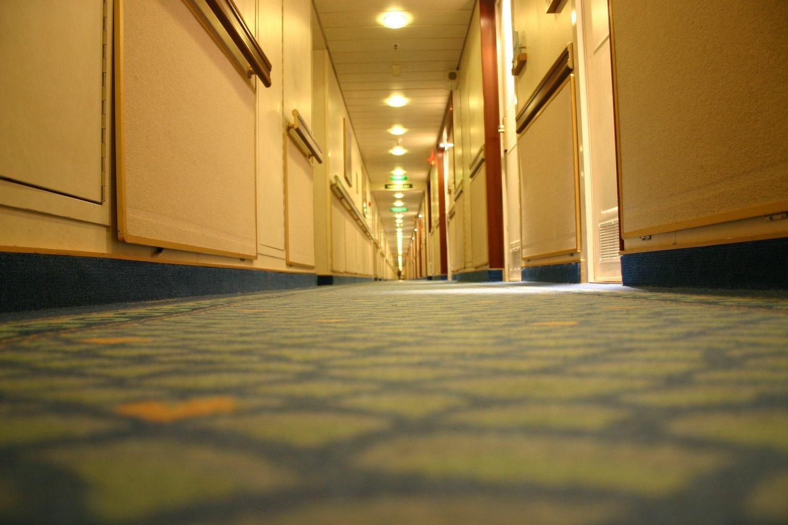 Чистка мебели и ковров от клининговой в Москве
